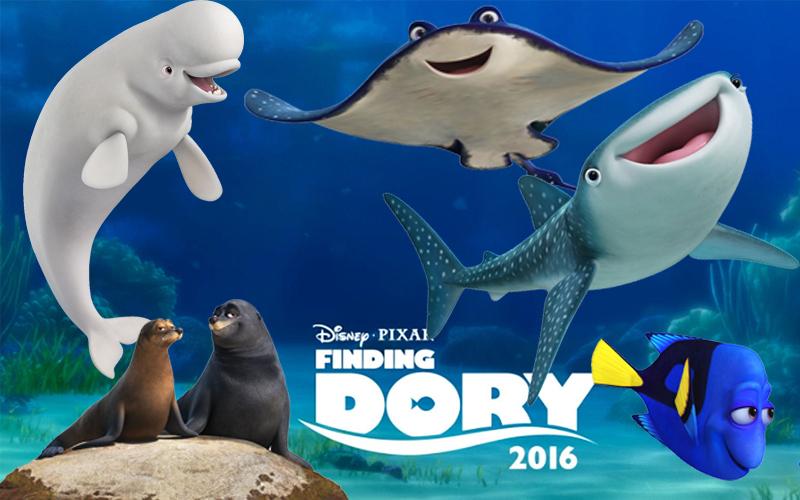 Buscando a Dory 1