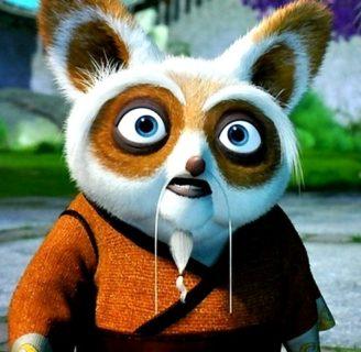 Conozca todo sobre shifu de kung fu panda