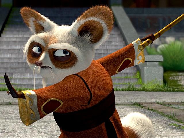 shifu de kung fu panda 1