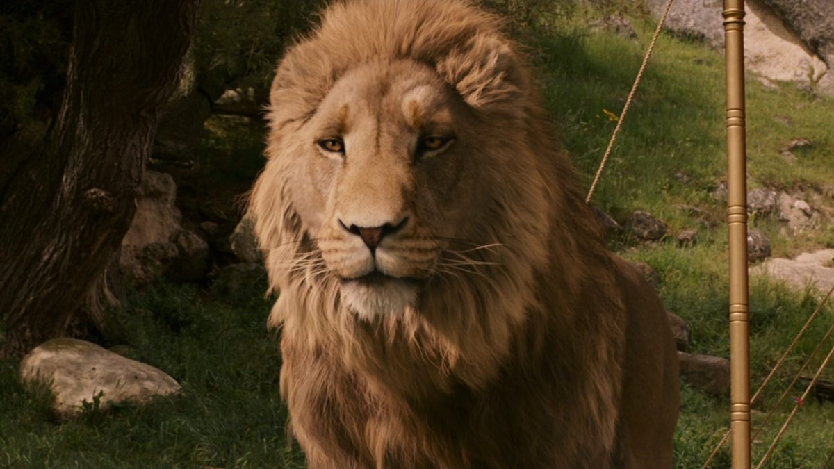 narnia 1: aslan.