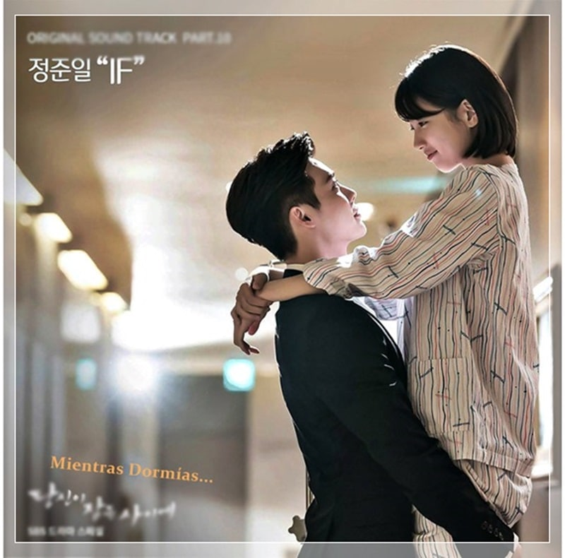 While You Were Sleeping Sinopsis Actores Resumen Y Más
